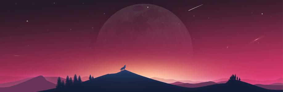 Shiba RS Cover Image